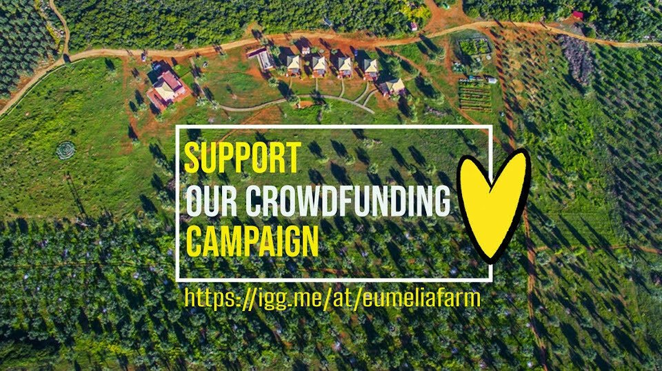 Eumelia community, support our effort to go off-grid