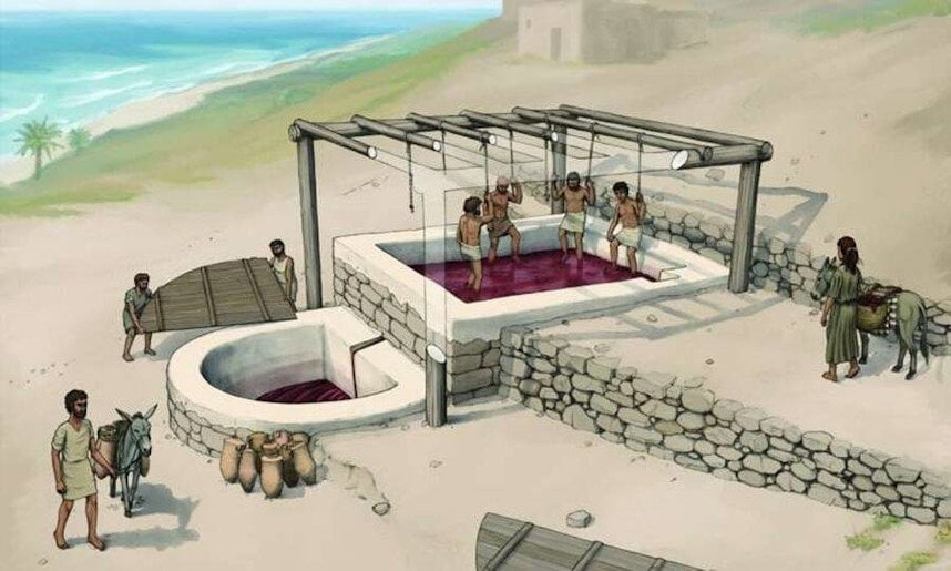 2,600-year-old wine 'factory' unearthed in Lebanon