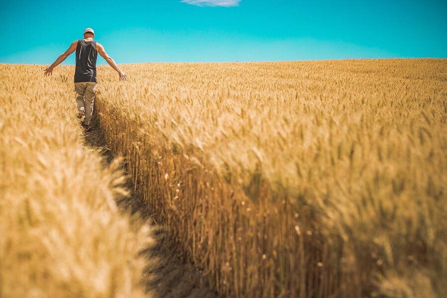 Greece Prepares Agrotourism Strategy