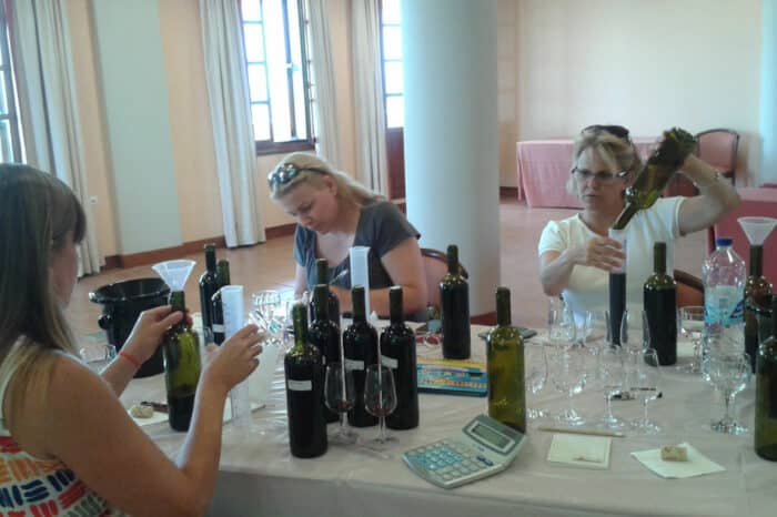 Winemaker for a Day at Domaine Hatzimichalis