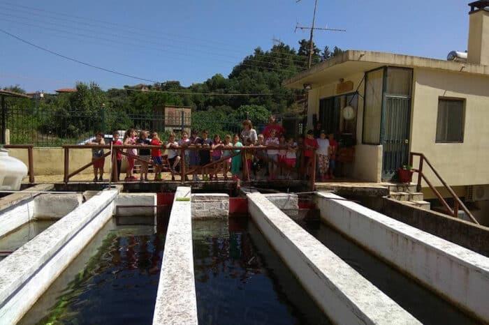 Pisciculture Activities at G-Fish