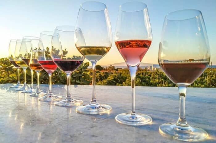 Vineyard Tour and Tasting, Domaine Sigalas